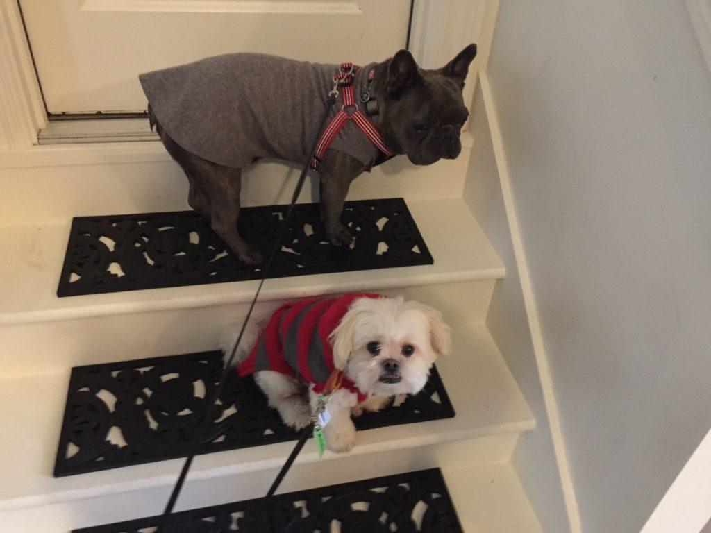 Max & Theo